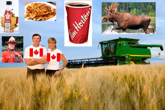 canadian-wheat-farmer